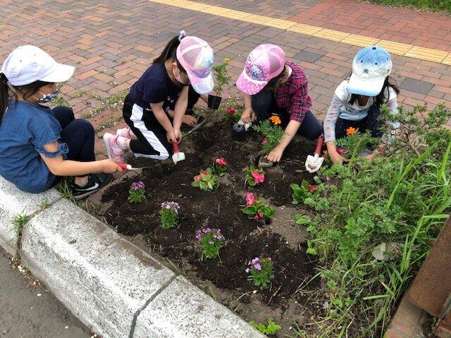 植樹枡と花壇へ花植えをしました